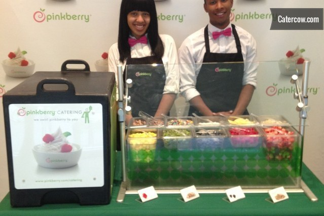 pinkberry frozen yogurt machine